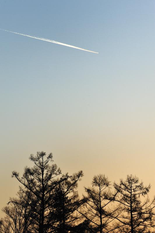 0Twilight shooting star3.jpg