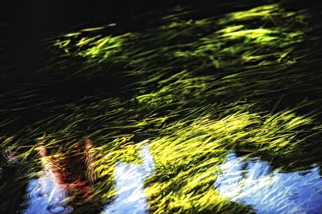 0Under water.jpg